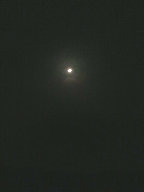 SN3J0574.jpg